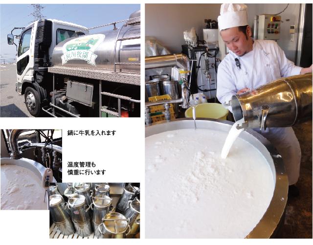 新鮮な搾りたて牛乳を牧場から直接搬入